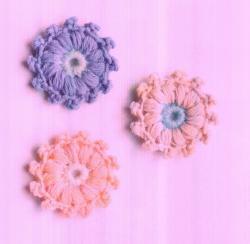 fleurs-de-picots-suite-Cliquez-Ici